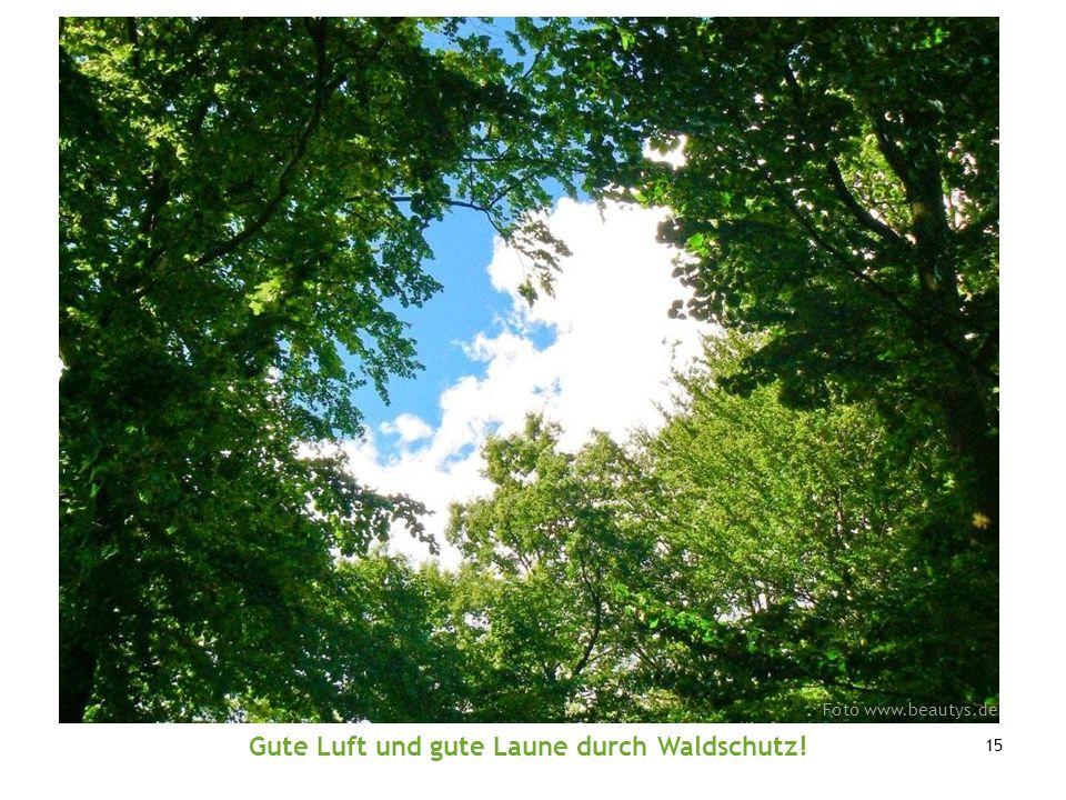 Gute Luft und gute Laune durch Waldschutz!
