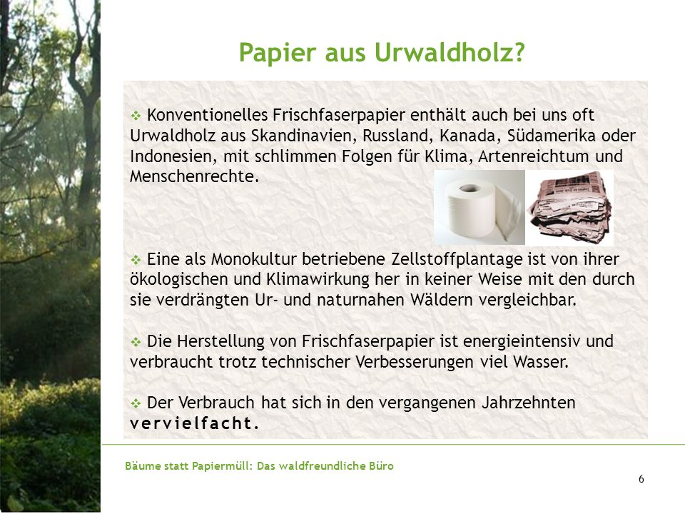 Papier aus Urwaldholz