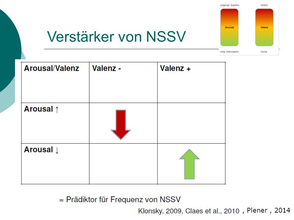 Verstärker von NSSV , Plener , 2014