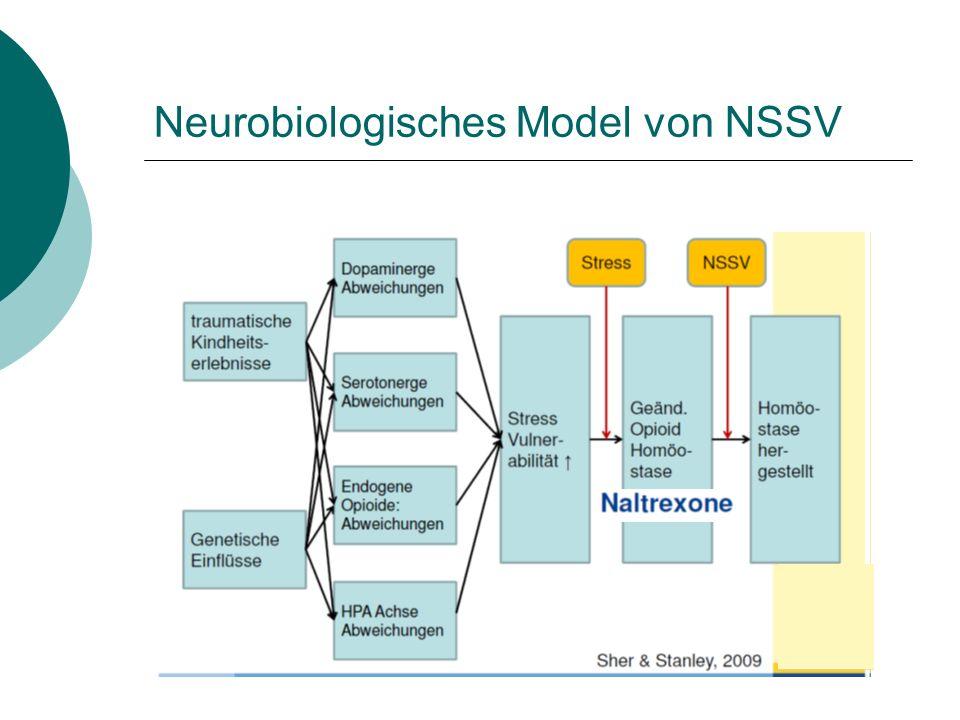 Neurobiologisches Model von NSSV