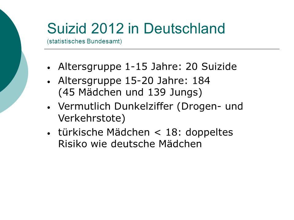 Suizid 2012 in Deutschland (statistisches Bundesamt)