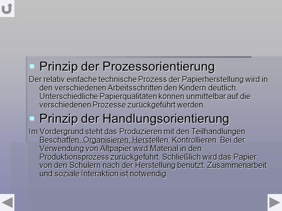 Prinzip der Prozessorientierung