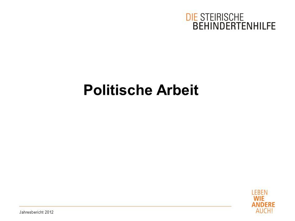 Politische Arbeit Jahresbericht 2012