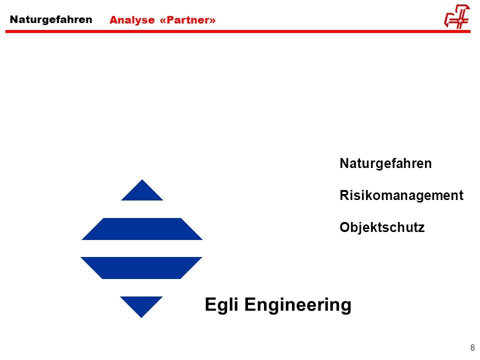 Egli Engineering Naturgefahren Risikomanagement Objektschutz