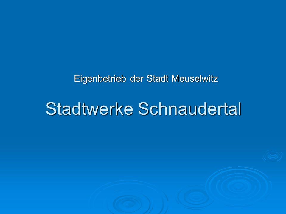 Stadtwerke Schnaudertal