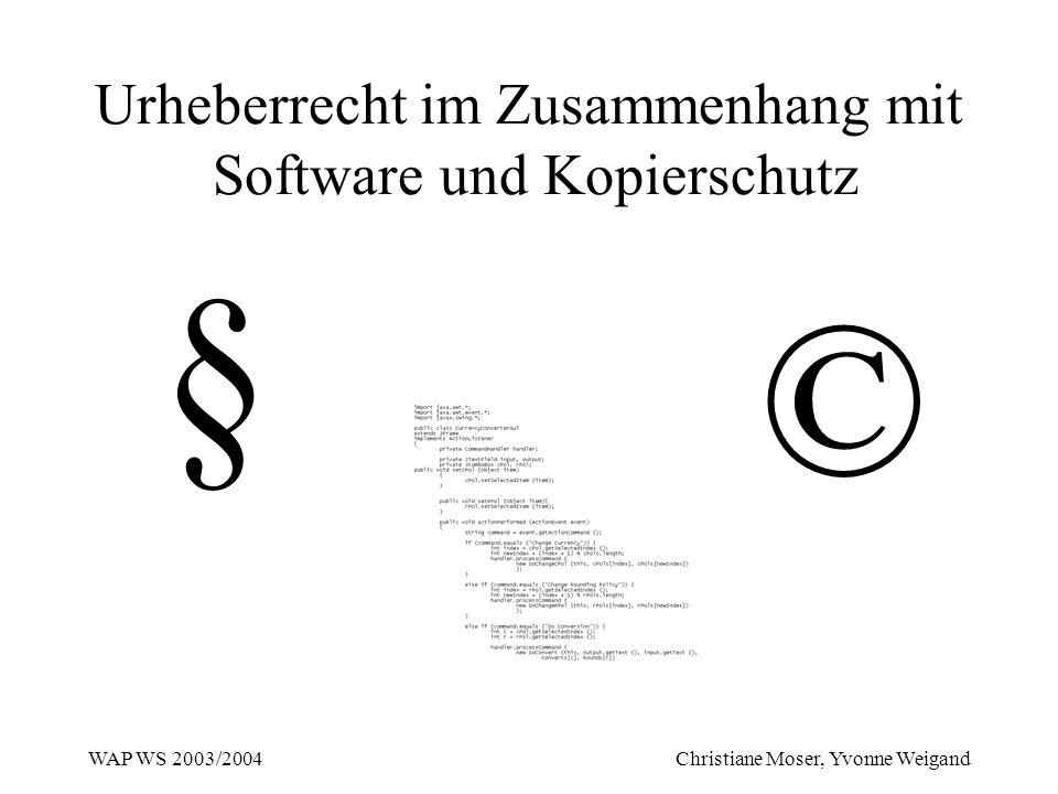 Urheberrecht im Zusammenhang mit Software und Kopierschutz