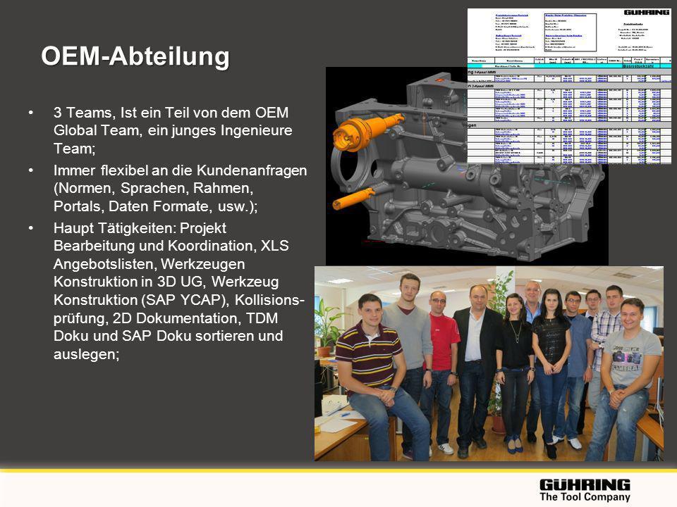 OEM-Abteilung 3 Teams, Ist ein Teil von dem OEM Global Team, ein junges Ingenieure Team;