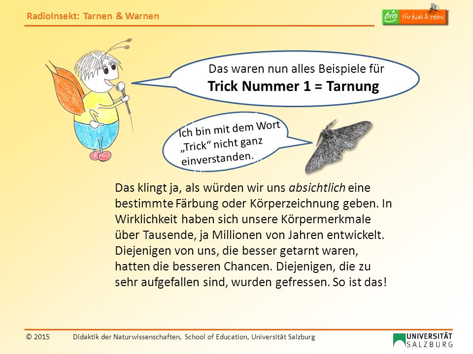 """RadioInsekt"""" zur Frage, was Insekten hilft - ppt video online ..."""
