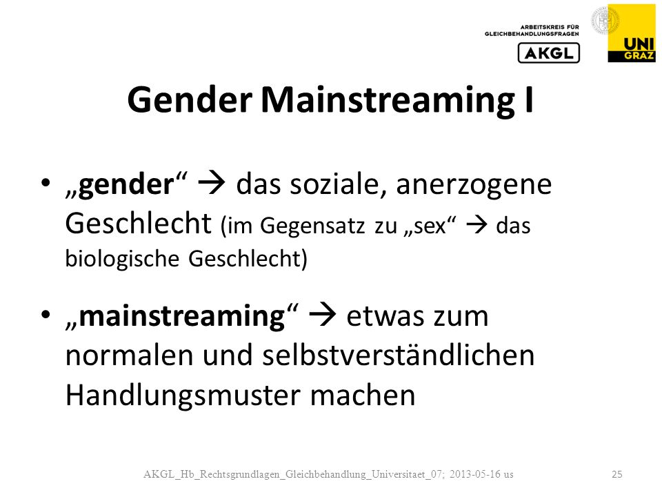 Gender Mainstreaming I