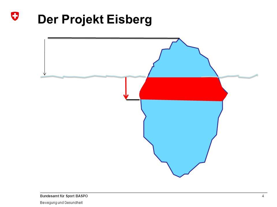 Der Projekt Eisberg