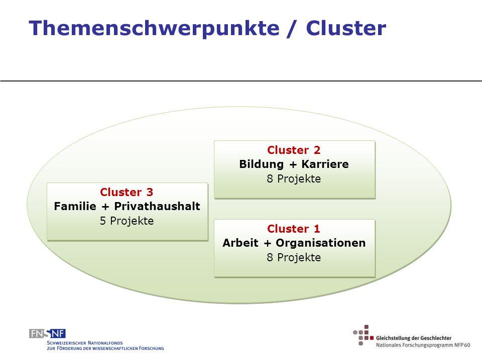 Themenschwerpunkte / Cluster