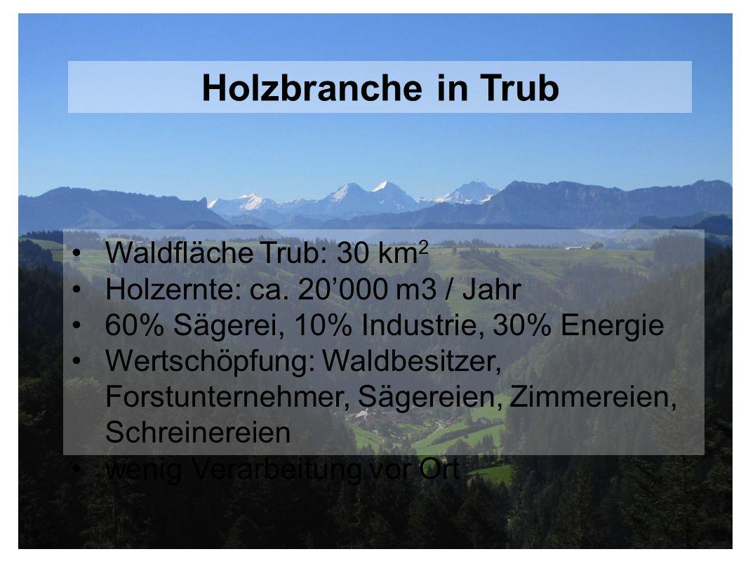 Holzbranche in Trub Waldfläche Trub: 30 km2