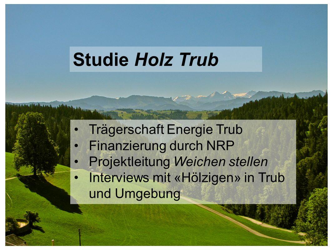 Studie Holz Trub Trägerschaft Energie Trub Finanzierung durch NRP