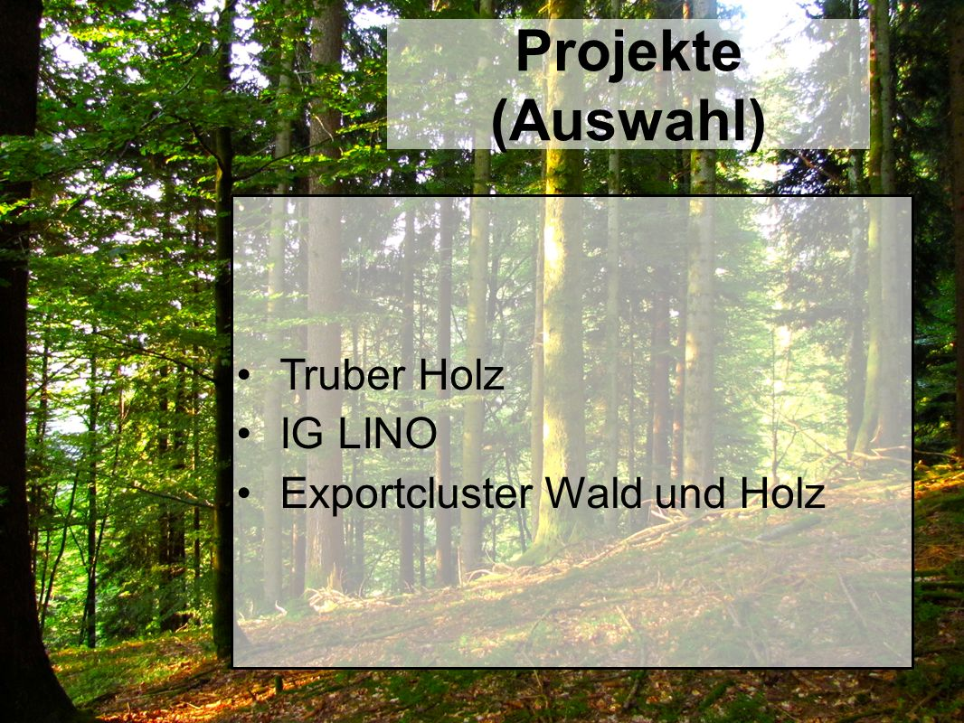 Projekte (Auswahl) Truber Holz IG LINO Exportcluster Wald und Holz