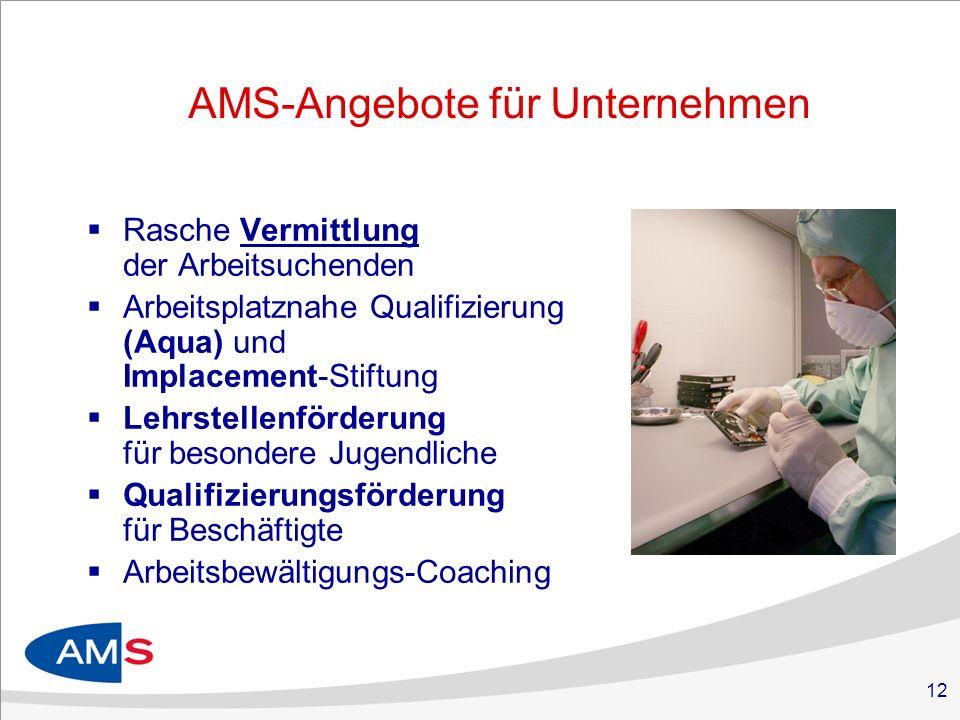 AMS-Angebote für Unternehmen