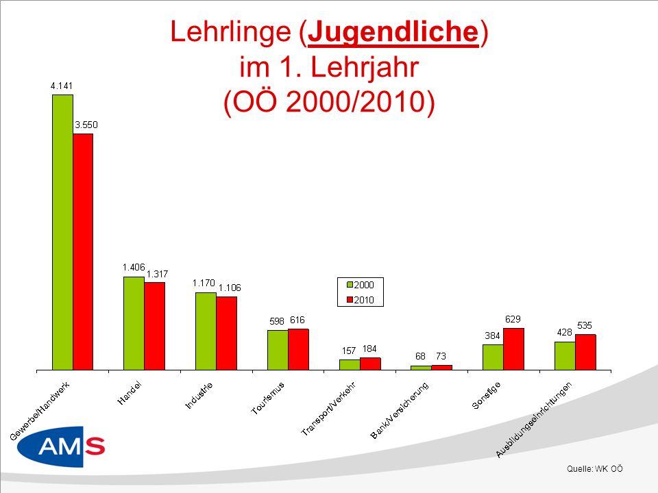 Lehrlinge (Jugendliche) im 1. Lehrjahr (OÖ 2000/2010)