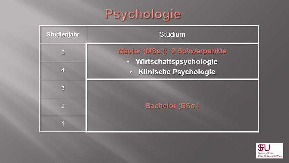 Psychologie Studium Master (MSc.): 2 Schwerpunkte
