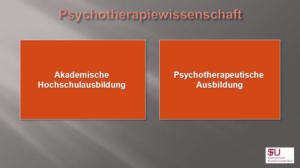 Psychotherapiewissenschaft Psychotherapeutische