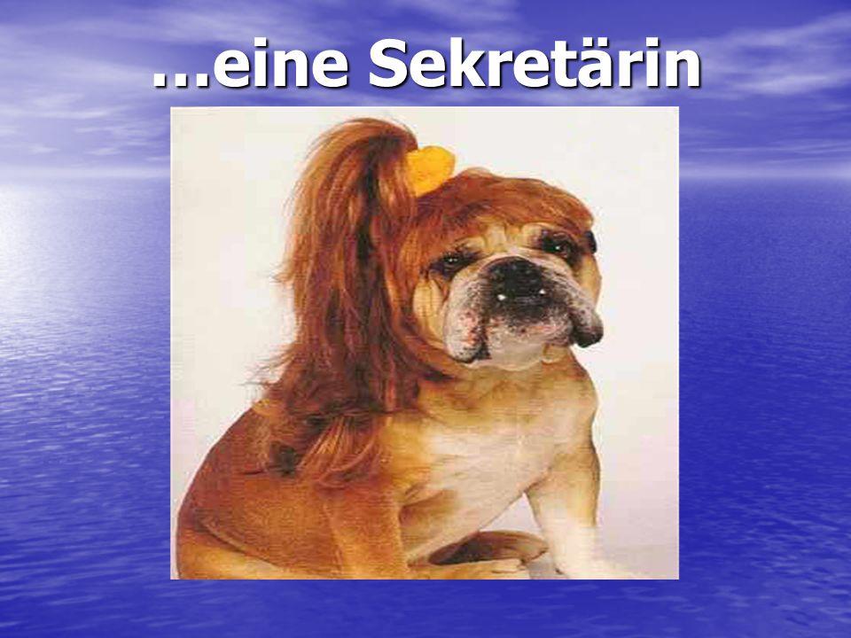…eine Sekretärin Oh la belle rousse