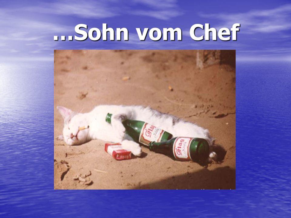 …Sohn vom Chef No comment