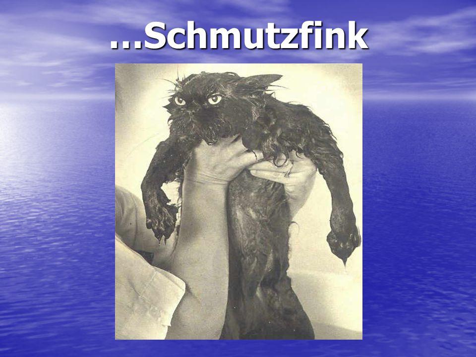 …Schmutzfink Moi j'aime pas les jamais contents…