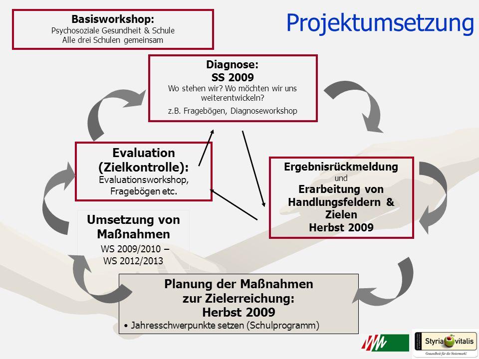 Projektumsetzung Evaluation (Zielkontrolle): Umsetzung von Maßnahmen