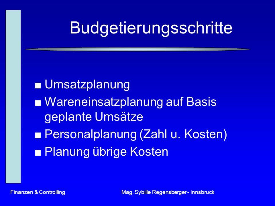 Budgetierungsschritte