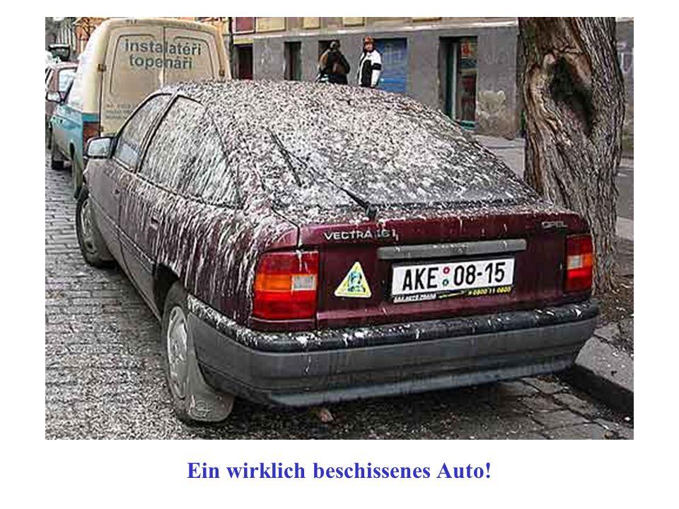 Ein wirklich beschissenes Auto!
