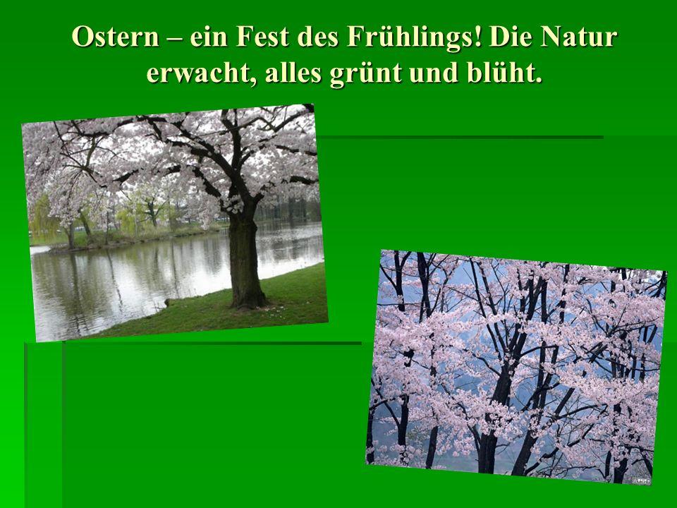 Ostern – ein Fest des Frühlings