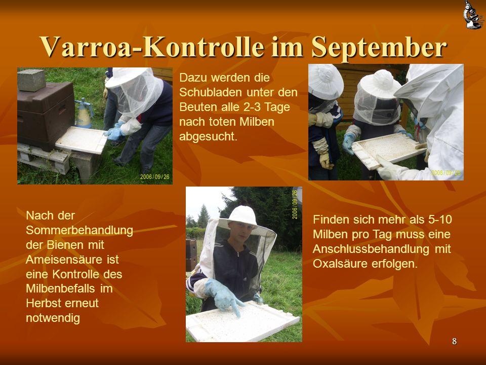 Varroa-Kontrolle im September