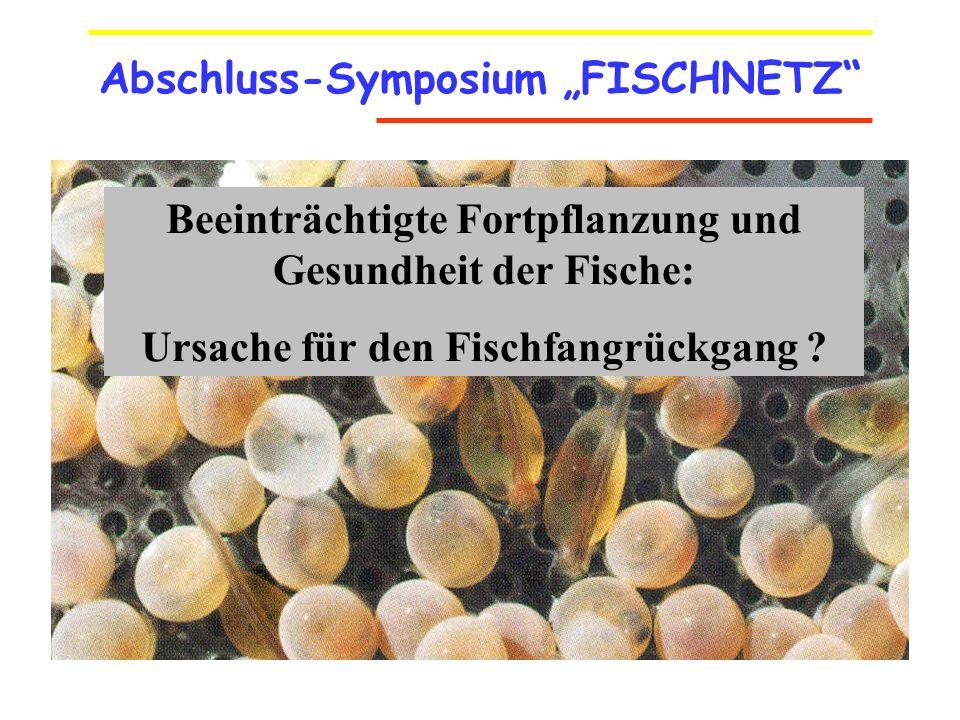 """Abschluss-Symposium """"FISCHNETZ"""