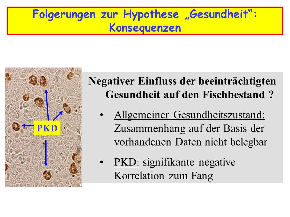 """Folgerungen zur Hypothese """"Gesundheit : Konsequenzen"""
