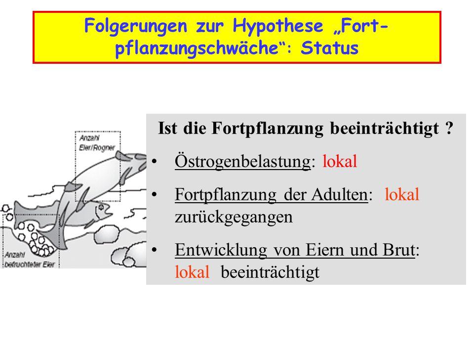 """Folgerungen zur Hypothese """"Fort-pflanzungschwäche : Status"""