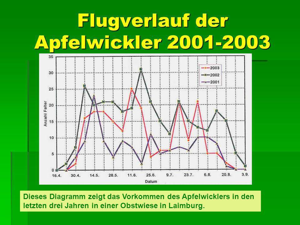 Flugverlauf der Apfelwickler 2001-2003