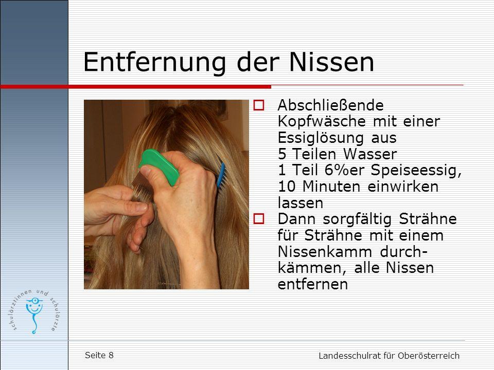 Entfernung der Nissen Abschließende Kopfwäsche mit einer Essiglösung aus. 5 Teilen Wasser. 1 Teil 6%er Speiseessig,