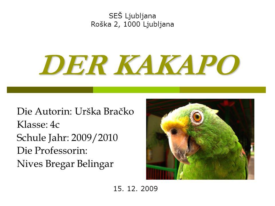 DER KAKAPO Die Autorin: Urška Bračko Klasse: 4c Schule Jahr: 2009/2010