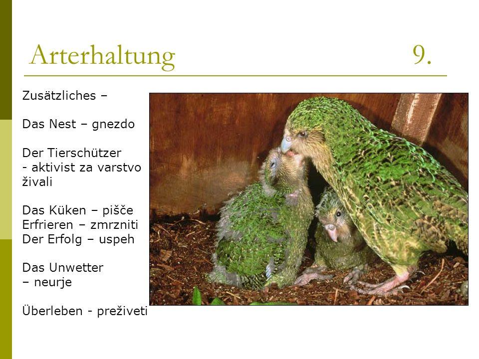 Arterhaltung 9. Zusätzliches – Das Nest – gnezdo Der Tierschützer