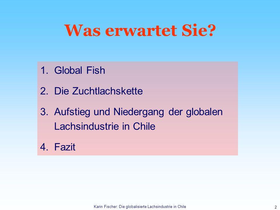 Karin Fischer: Die globalisierte Lachsindustrie in Chile