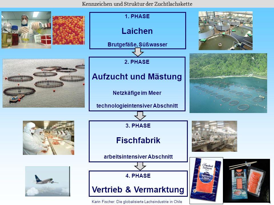 Laichen Aufzucht und Mästung Fischfabrik Vertrieb & Vermarktung