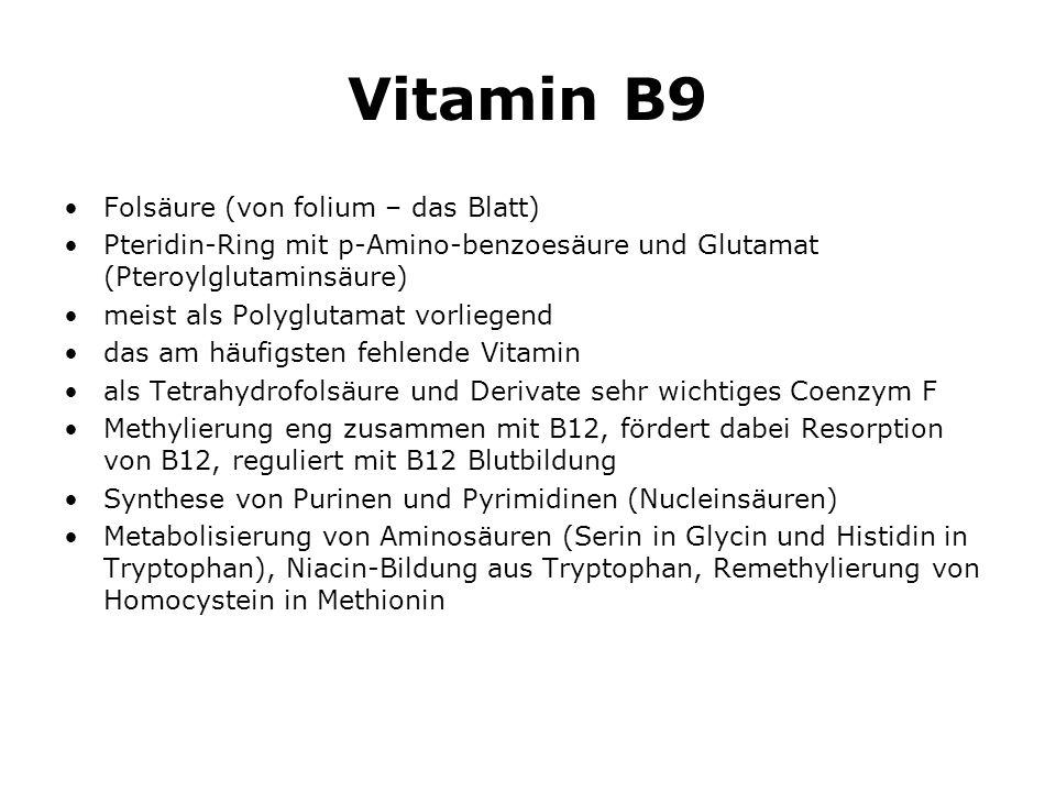 Vitamin B9 Folsäure (von folium – das Blatt)