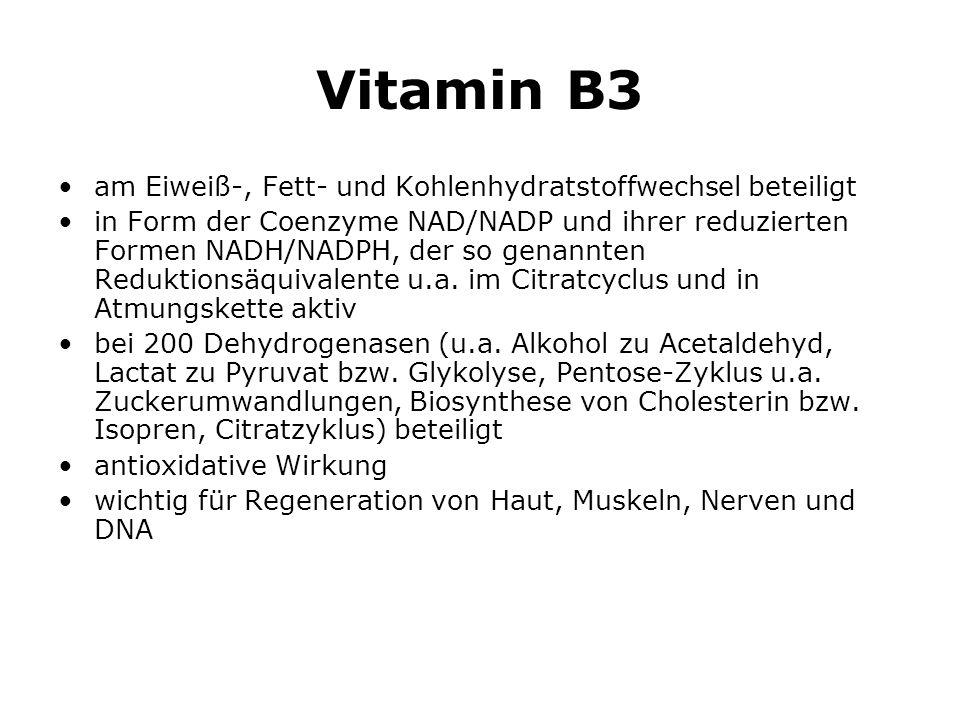 Vitamin B3 am Eiweiß-, Fett- und Kohlenhydratstoffwechsel beteiligt