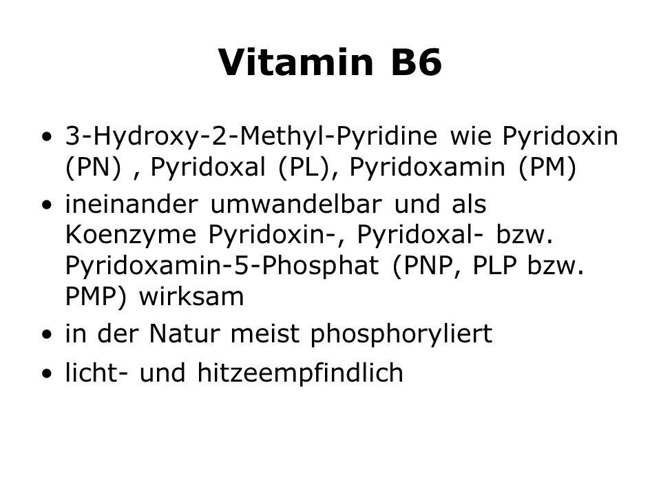 Vitamin B6 3-Hydroxy-2-Methyl-Pyridine wie Pyridoxin (PN) , Pyridoxal (PL), Pyridoxamin (PM)