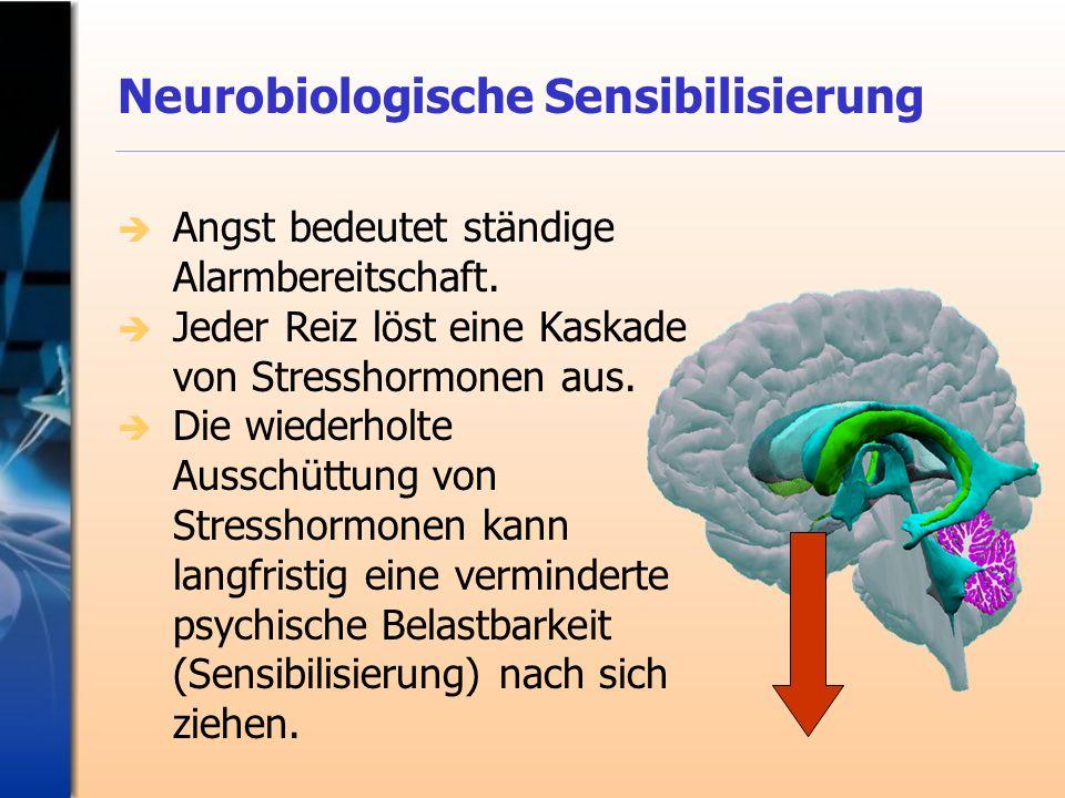Neurobiologische Sensibilisierung