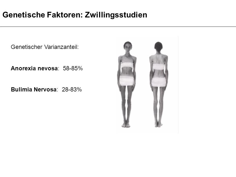 Genetische Faktoren: Zwillingsstudien