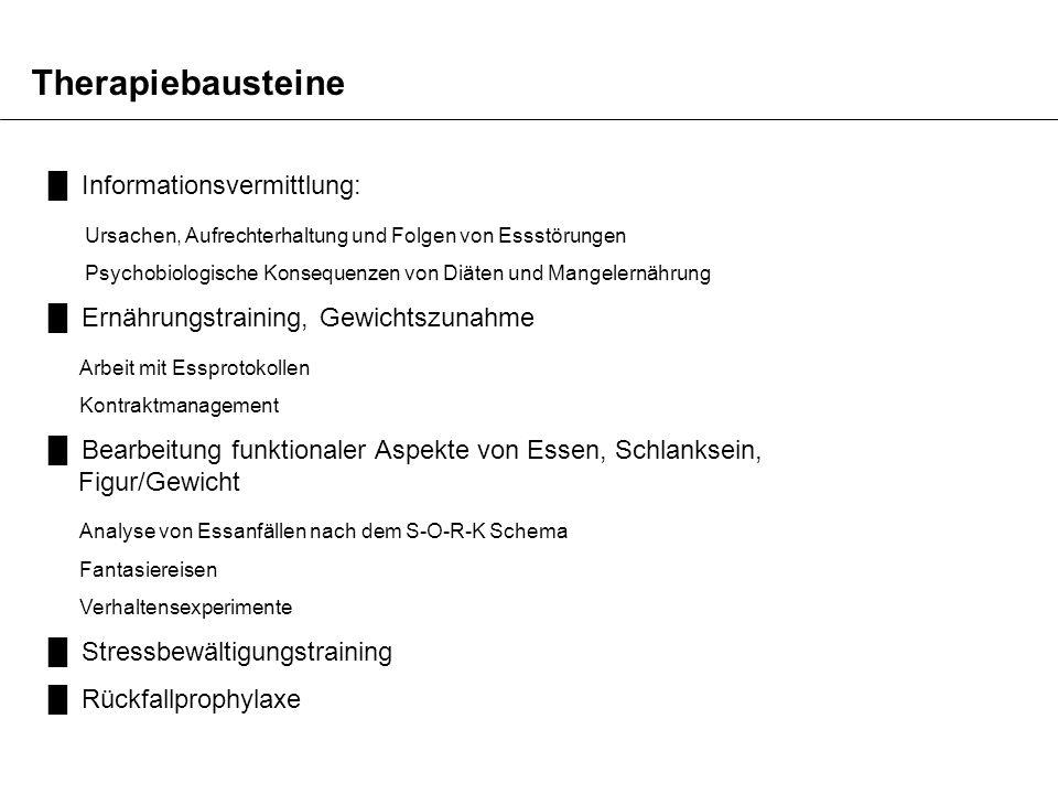 Therapiebausteine Informationsvermittlung: