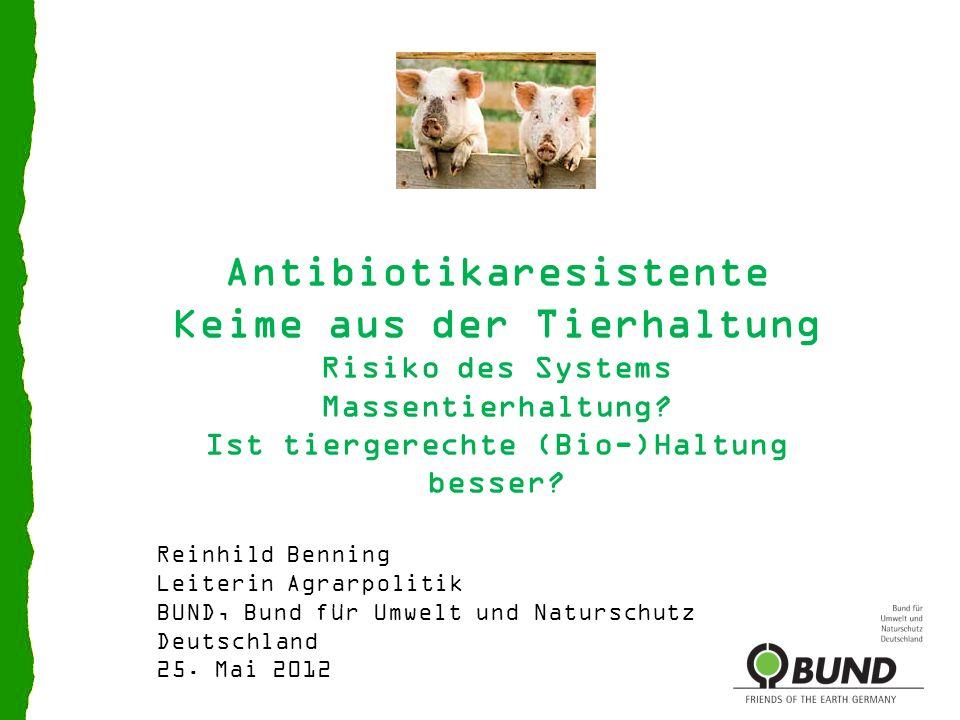 Antibiotikaresistente Keime aus der Tierhaltung