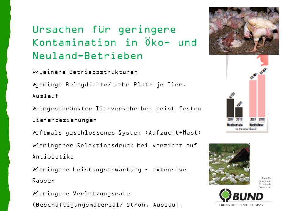 Ursachen für geringere Kontamination in Öko- und Neuland-Betrieben
