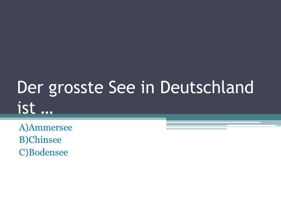 Der grosste See in Deutschland ist …