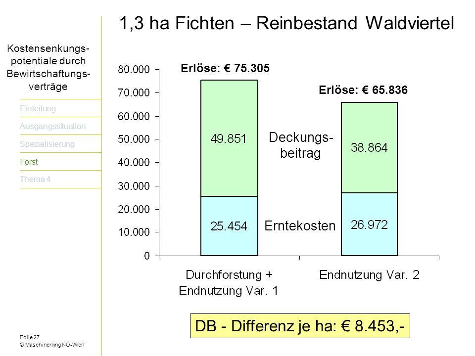 1,3 ha Fichten – Reinbestand Waldviertel