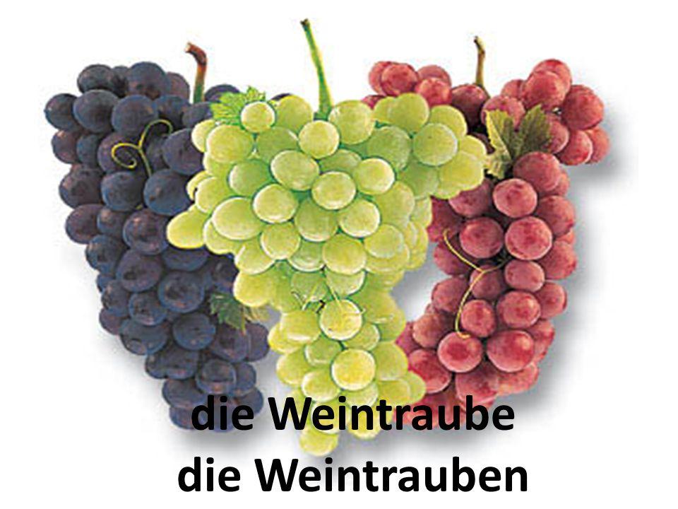 die Weintraube die Weintrauben